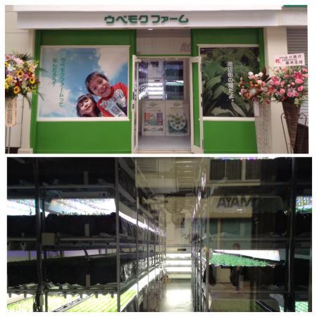 新天町に野菜工場^ ^